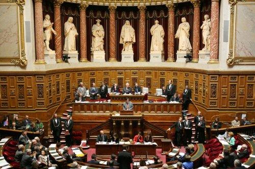 senat.1278508163.jpg