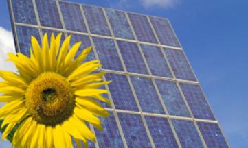 photovoltaique1.1301296962.jpg
